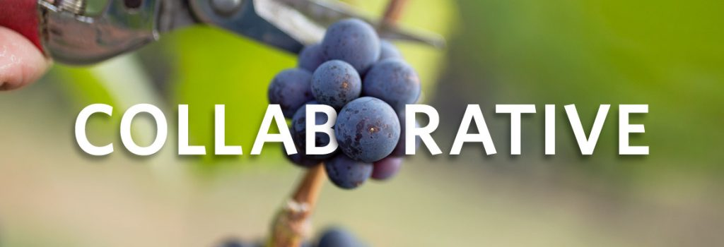 UBC okanagan wine research